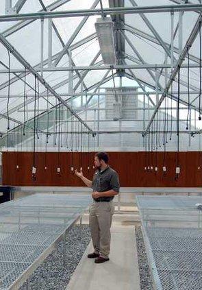 A-Greenhouse pic 1