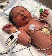 newborn found